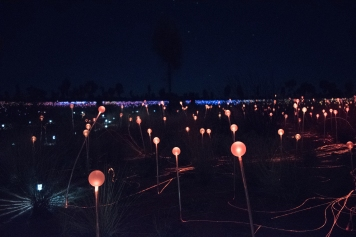 Bruce Munro's Field of Light Exhibition